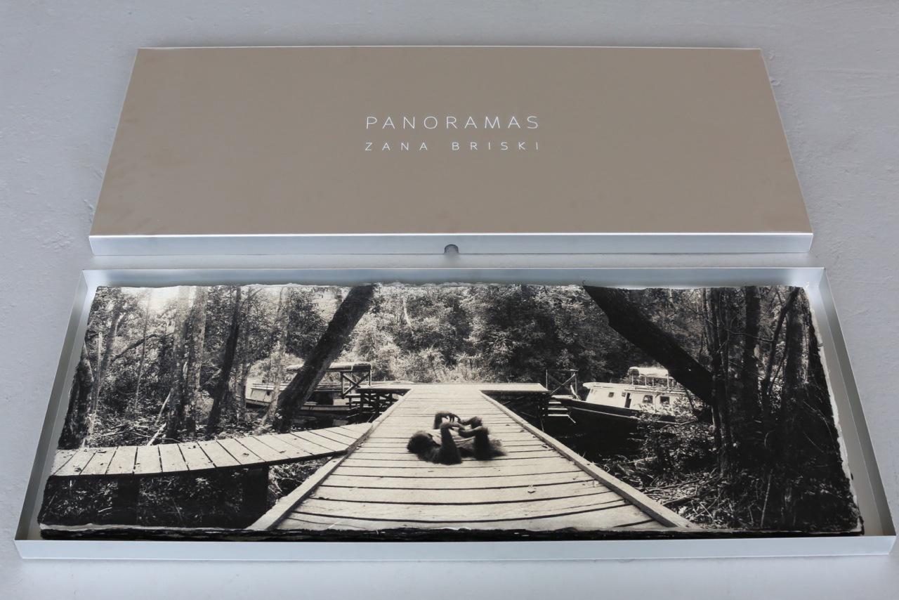 Orangutan ,collector's box.  Archival pigment print on handmade Japanese Kozo,  15 x 38 inches.