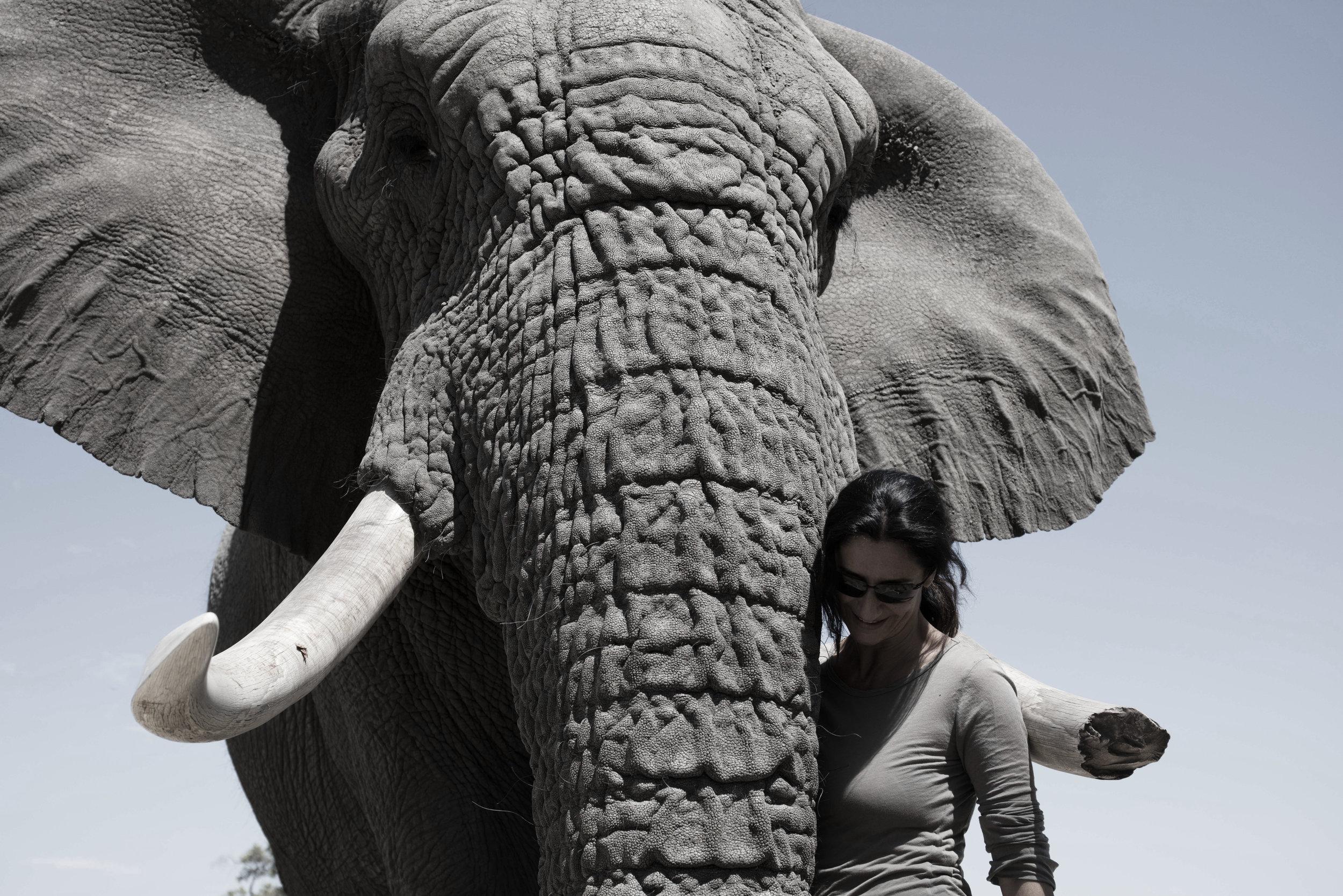 zana and elephant.jpg