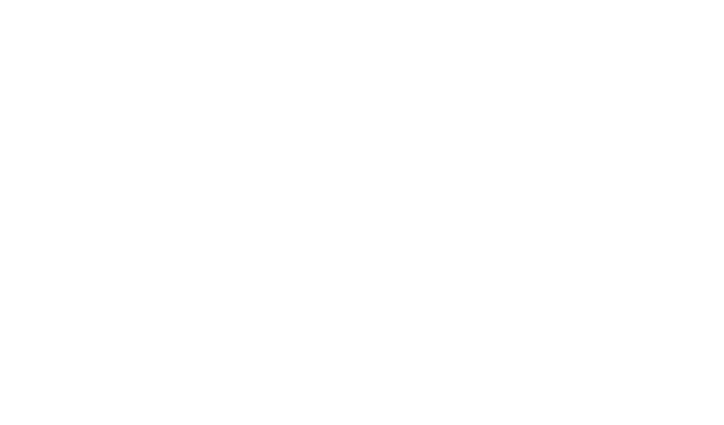 07-Horizons International Logo 2018 White.png