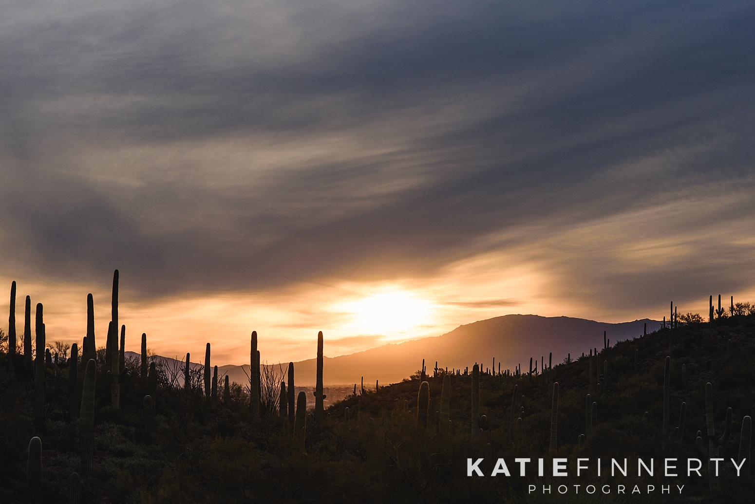 Saguaro National Park Gates Pass Sunrise Travel Photography