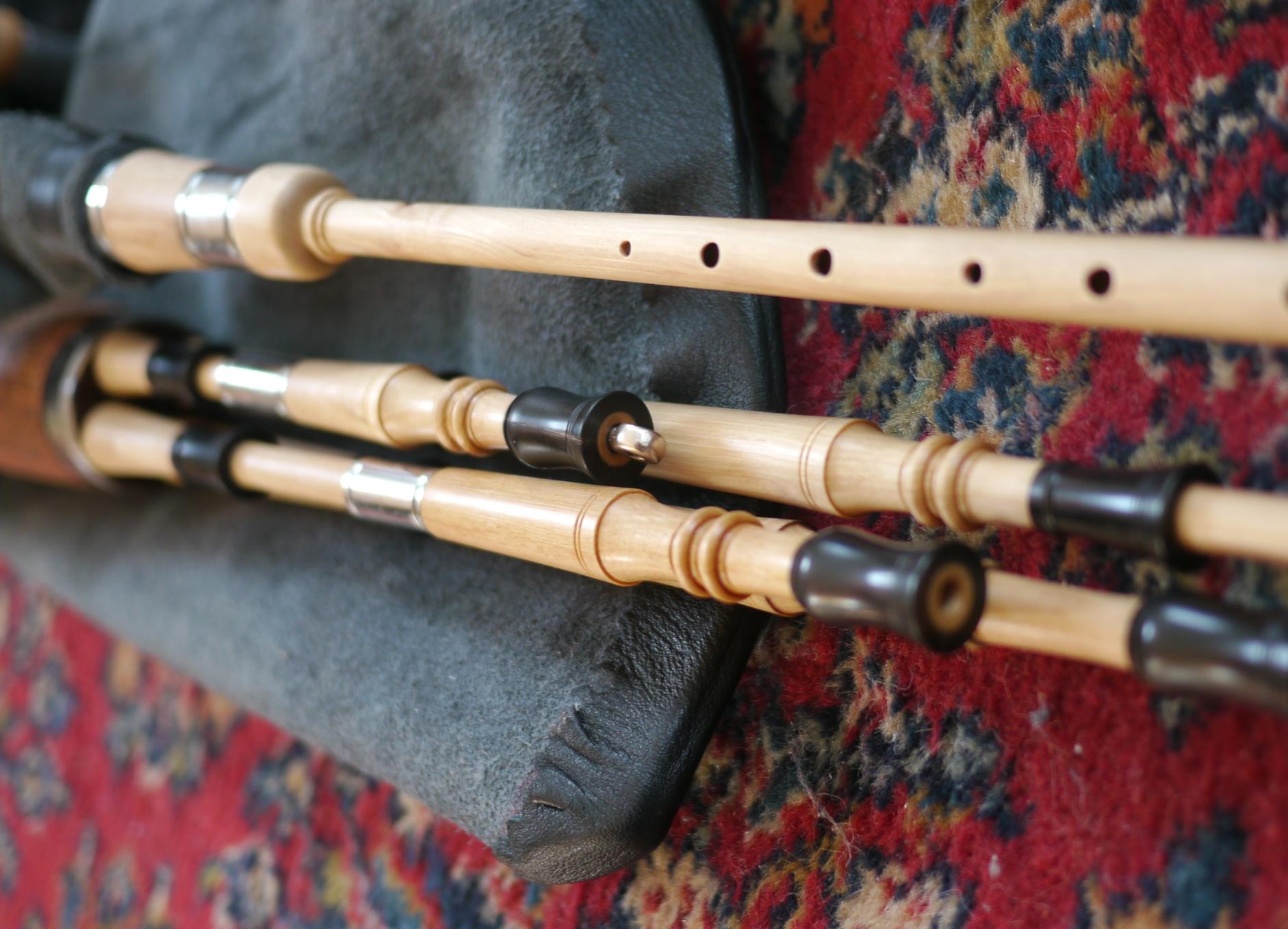 Hornbeam and Horn (M)