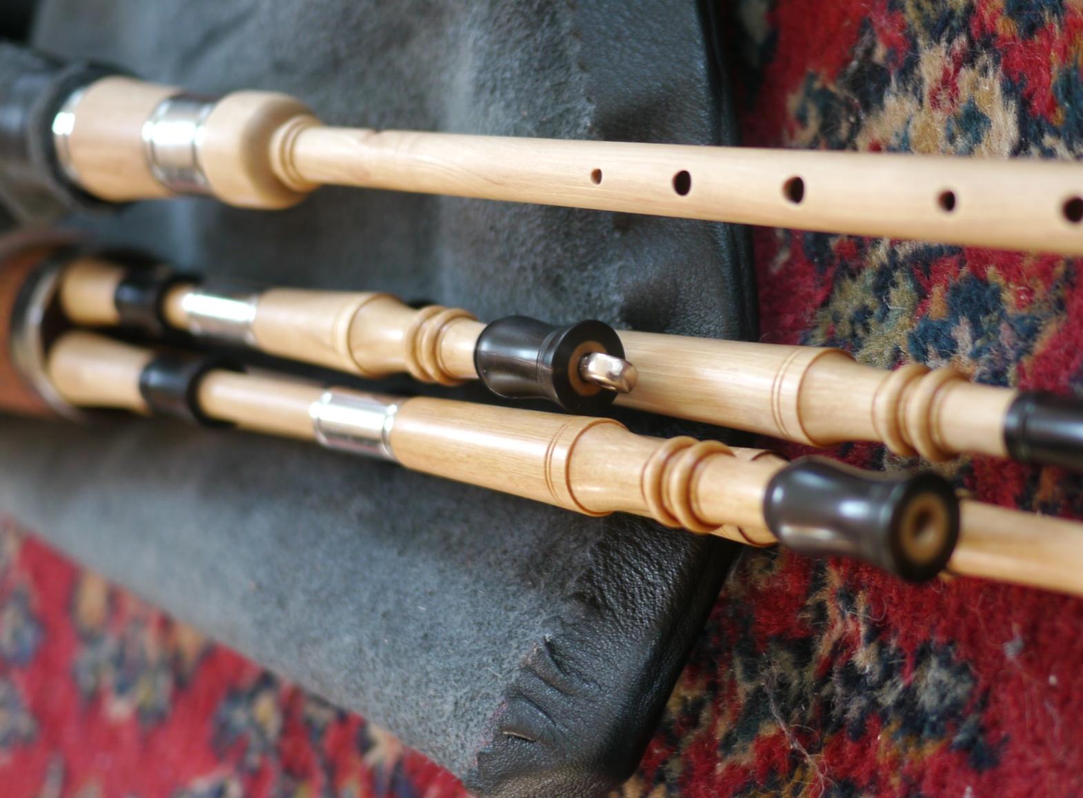 Hornbeam and Horn