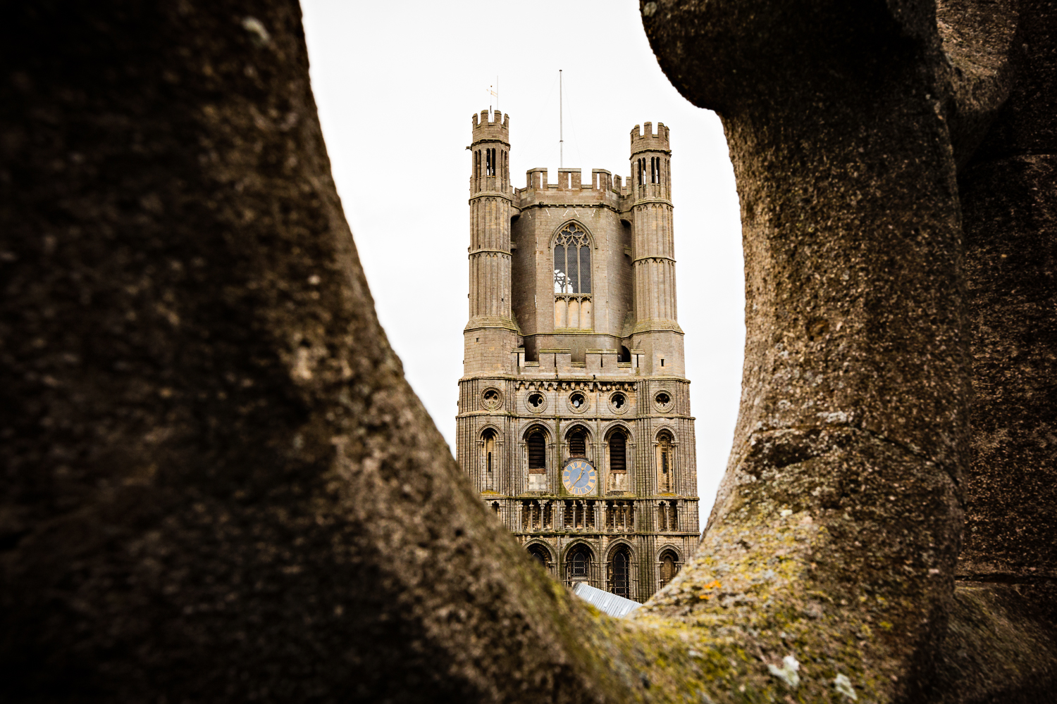 adventure-travel-photography-becky-brockie-cambridgeshire-ely-cathedral.jpg