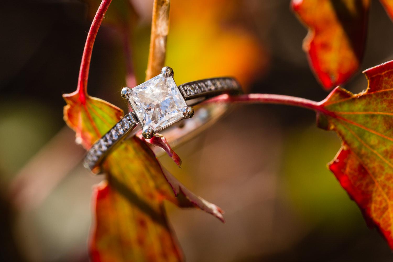 Billings-Montana-fall-engagement-ring-in-leaves.jpg