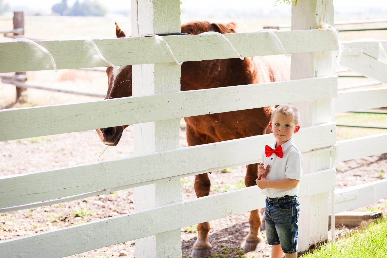 bozeman-montana-wedding-roys-barn-little-boy-visits-horse.jpg