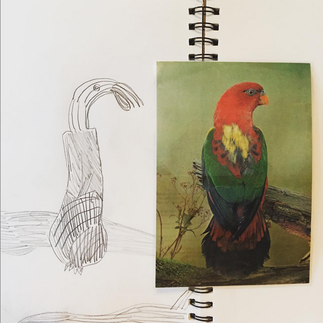 Peta Morris Art Teacher Students Work Bird 1