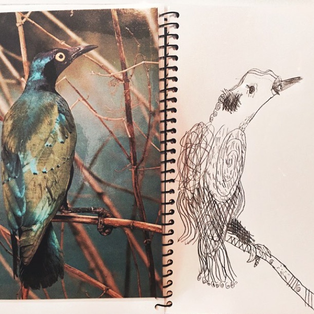 Peta Morris Art Teacher Students Work Bird 2