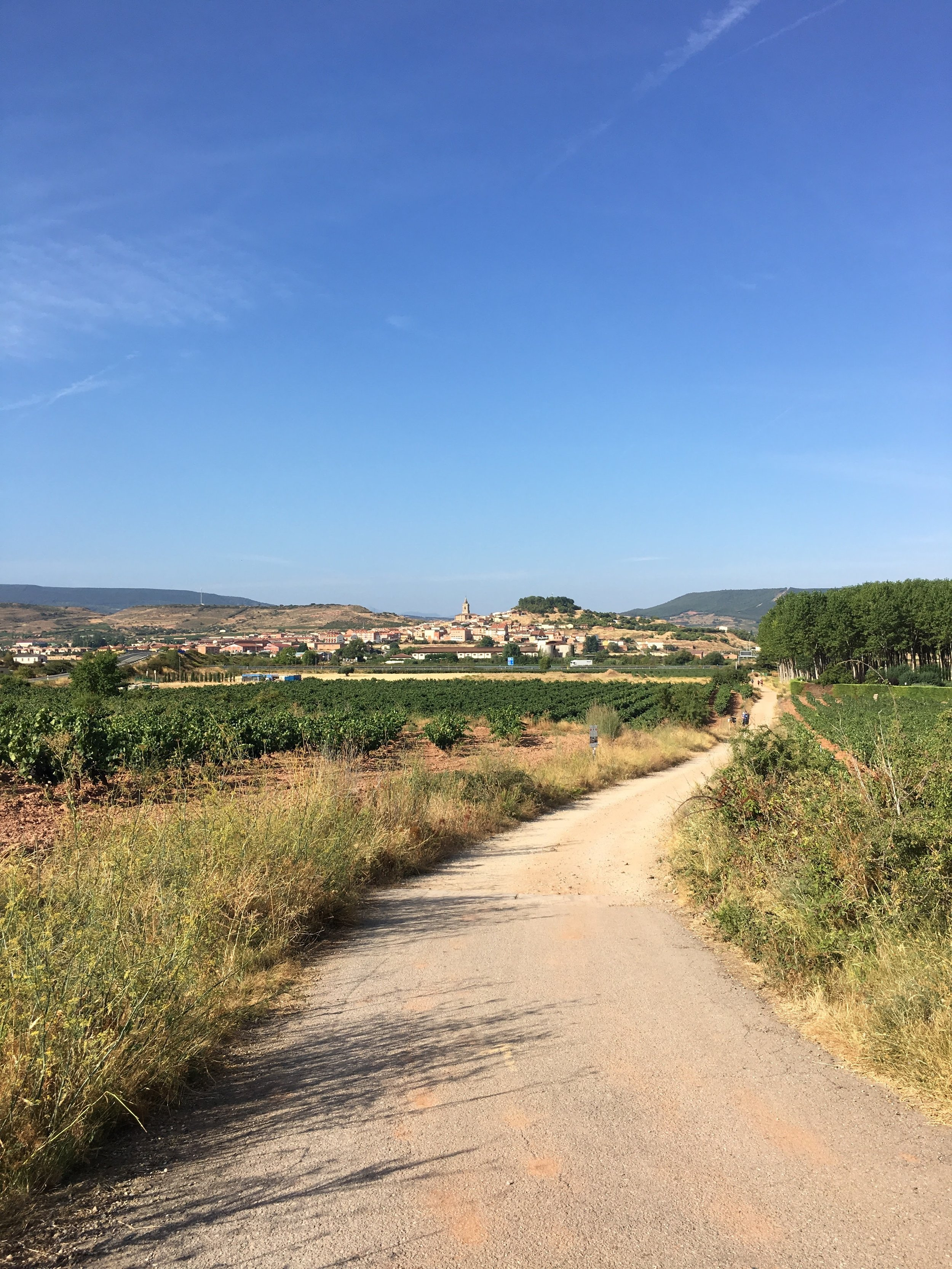 The path leading to Navarrete, Spain - September 2016