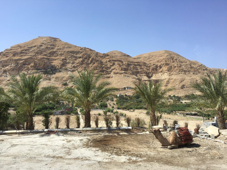 Desert outside Jericho, Israel - Oct 2015