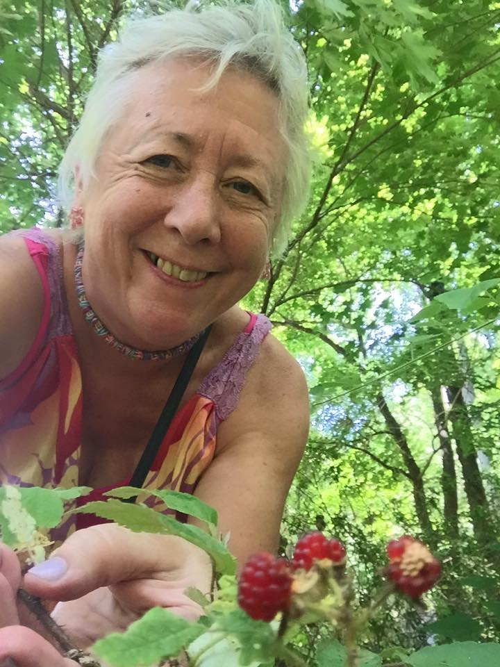 Ria Hawks our NPO president picking raspberries to dye with!