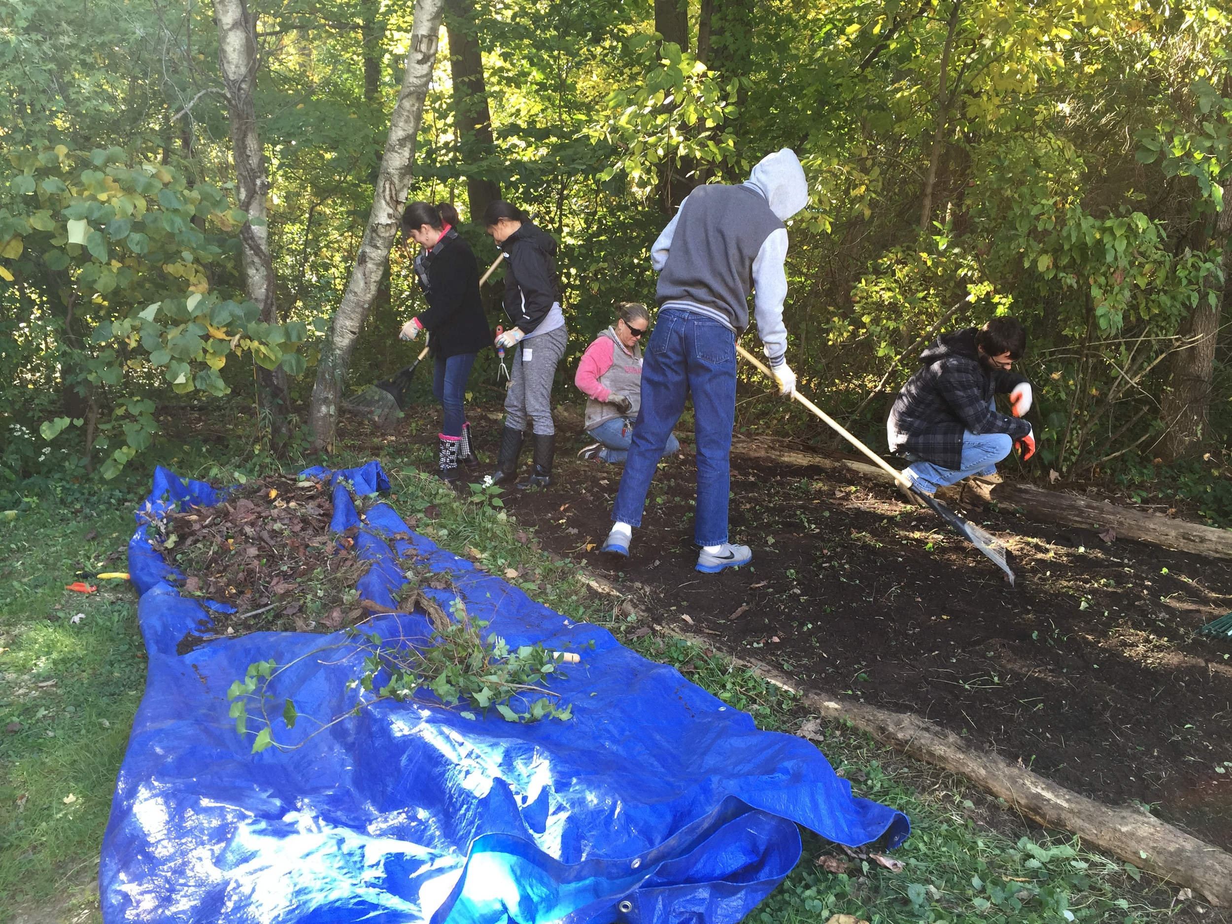 Fall-Stewardship-Day-Trail-Restoration-2015.JPG
