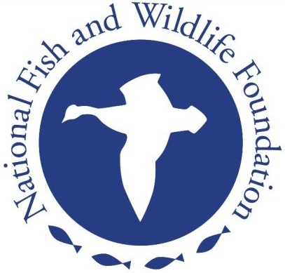 FishWildlifeFoundation.jpg