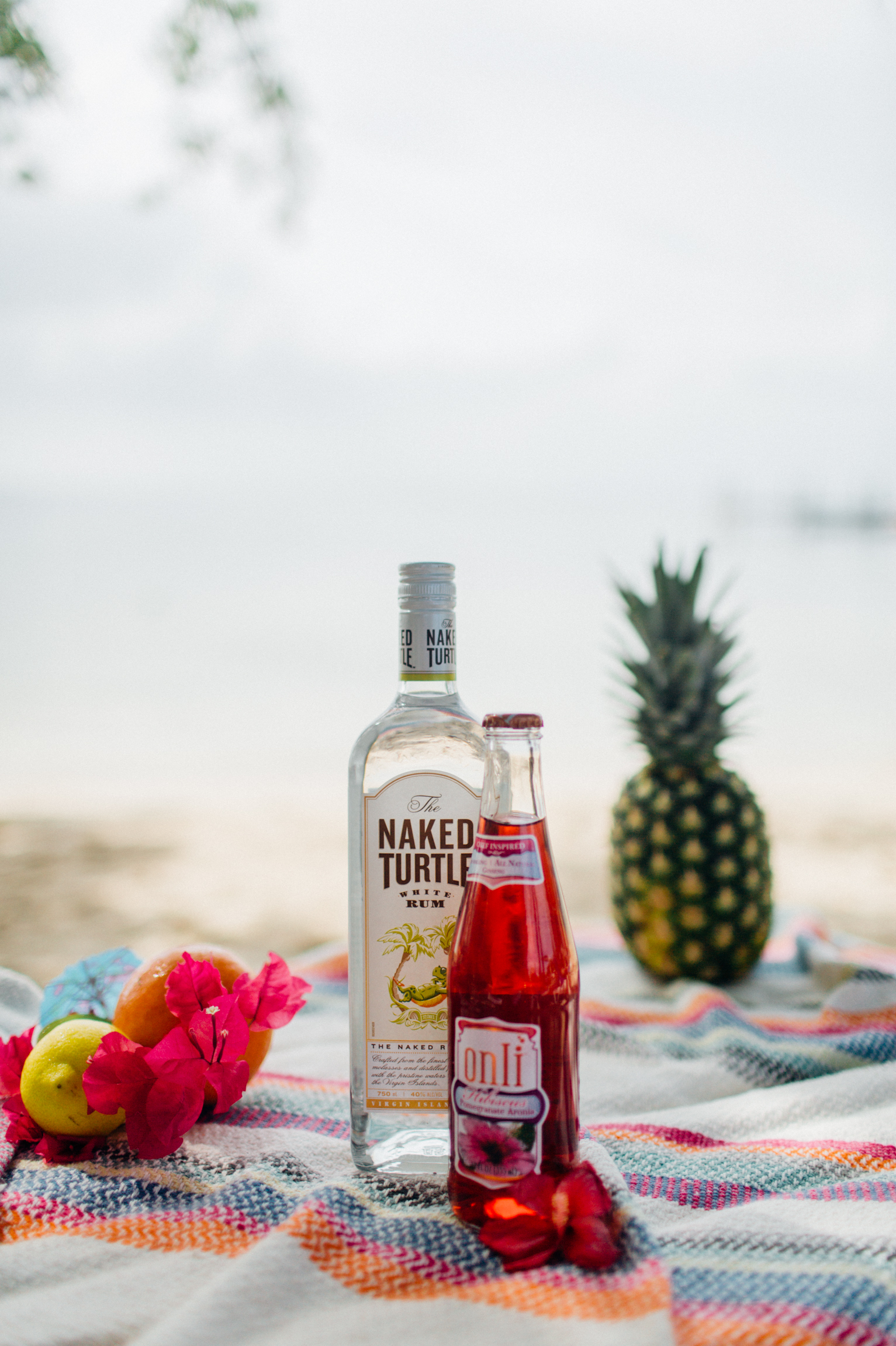 Free_Reverie_Styled_Photoshoot-Summer_Drink_Recipes-Florida_Party_Inspiration234.jpg