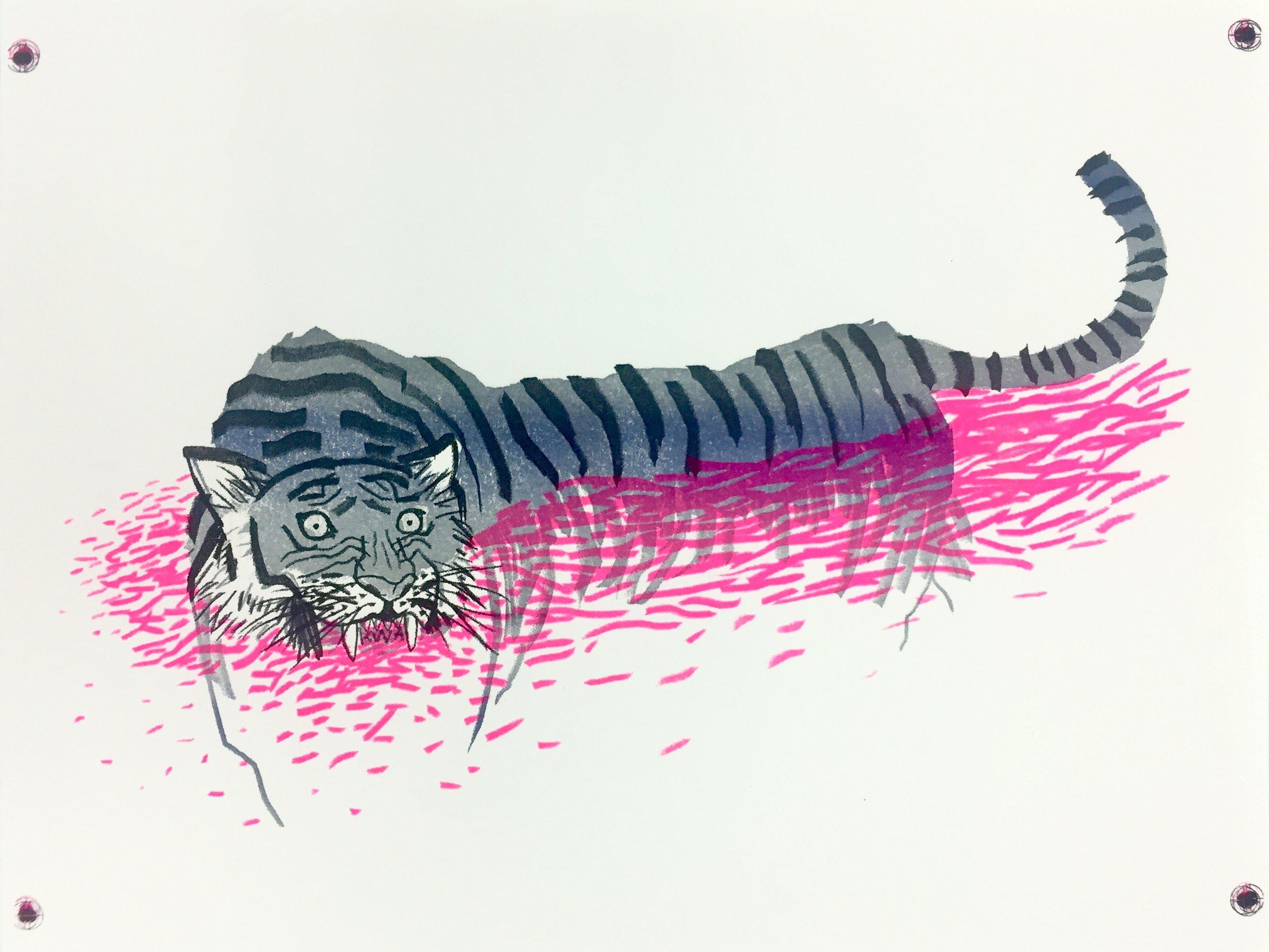 2016-11-13 tiger 1.jpg