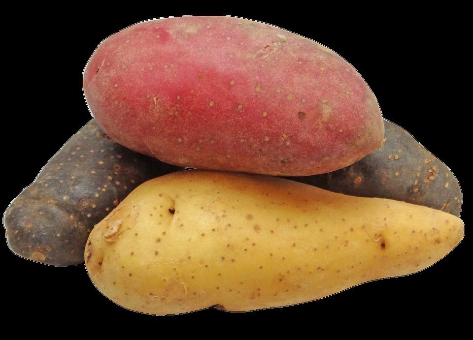 potato-2147541_960_720.png