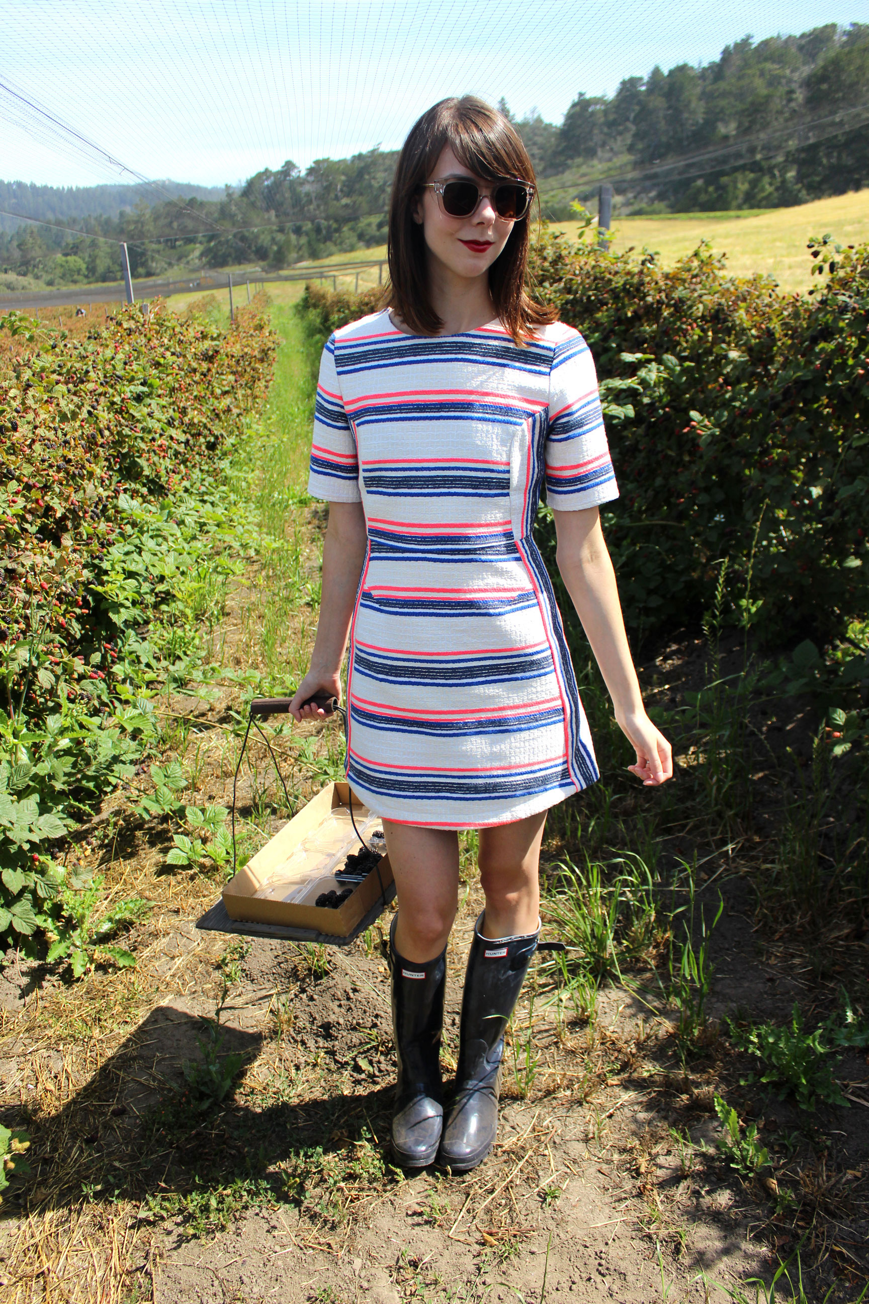 Summertime in Northern California - picking berries and wearing this red, white and blue striped shift dress from Topshop | Sundays and Somedays