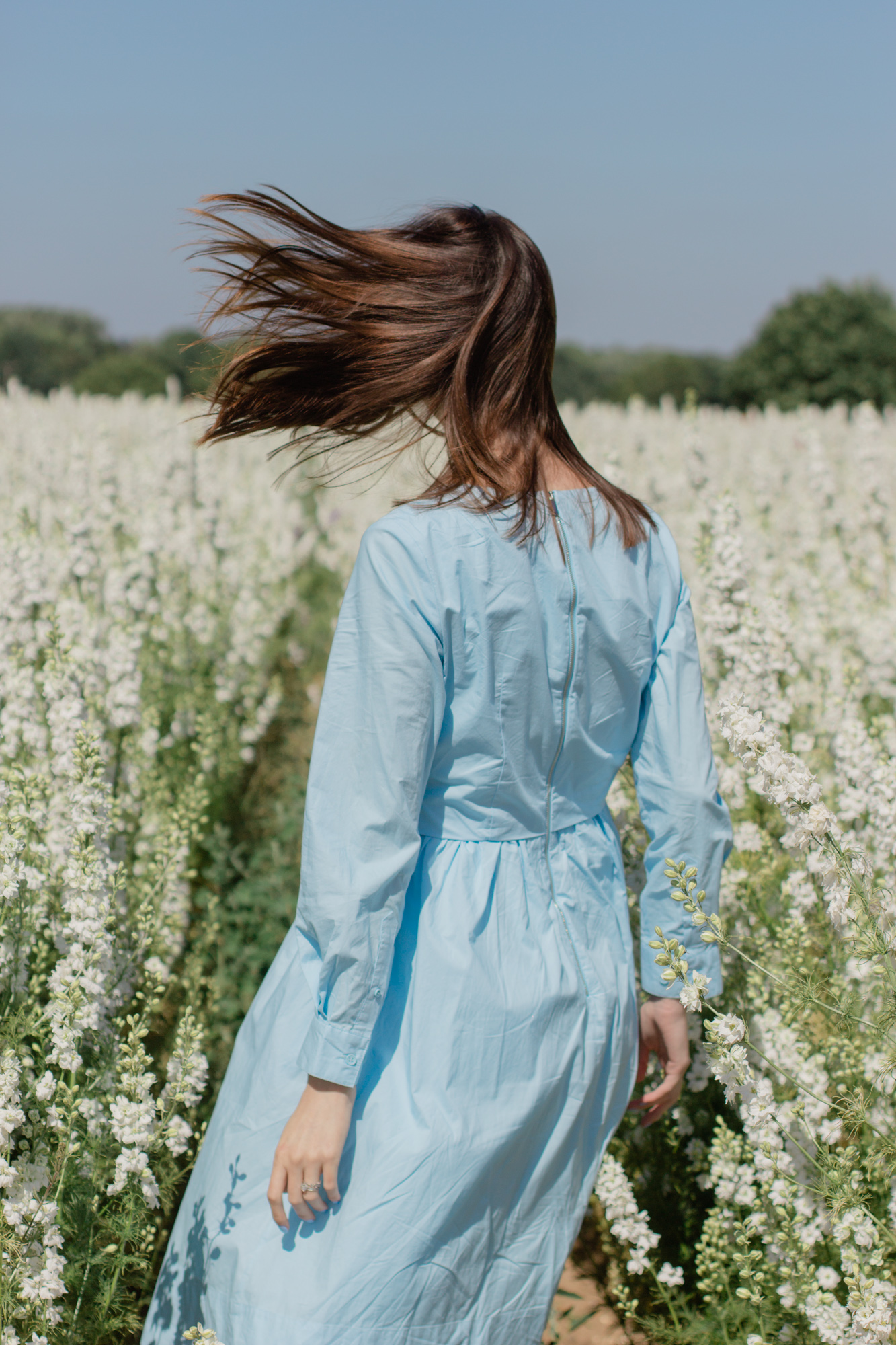 Wearing a blue dress at the Real Flower Petal Confetti Co Flower Fields in Warwick outside of London | Sundays and Somedays