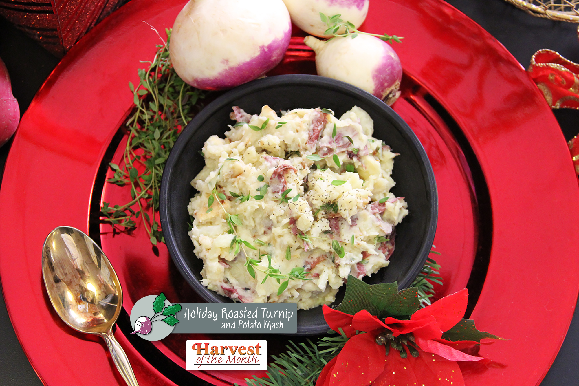 Harvest of the Month - Roasted Turnip Tater Mash  Photo: Katie Schmidt
