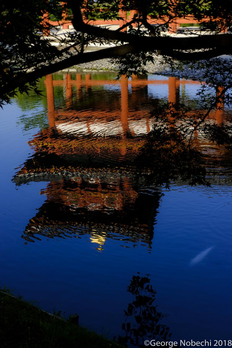 NC_Kyoto-0004.jpg
