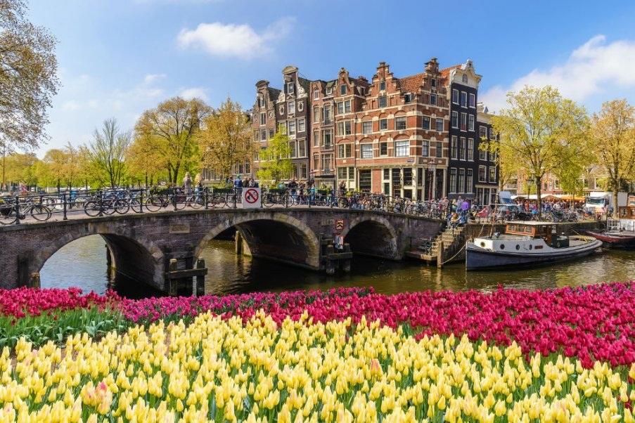amsterdam-tulip-festival.jpg