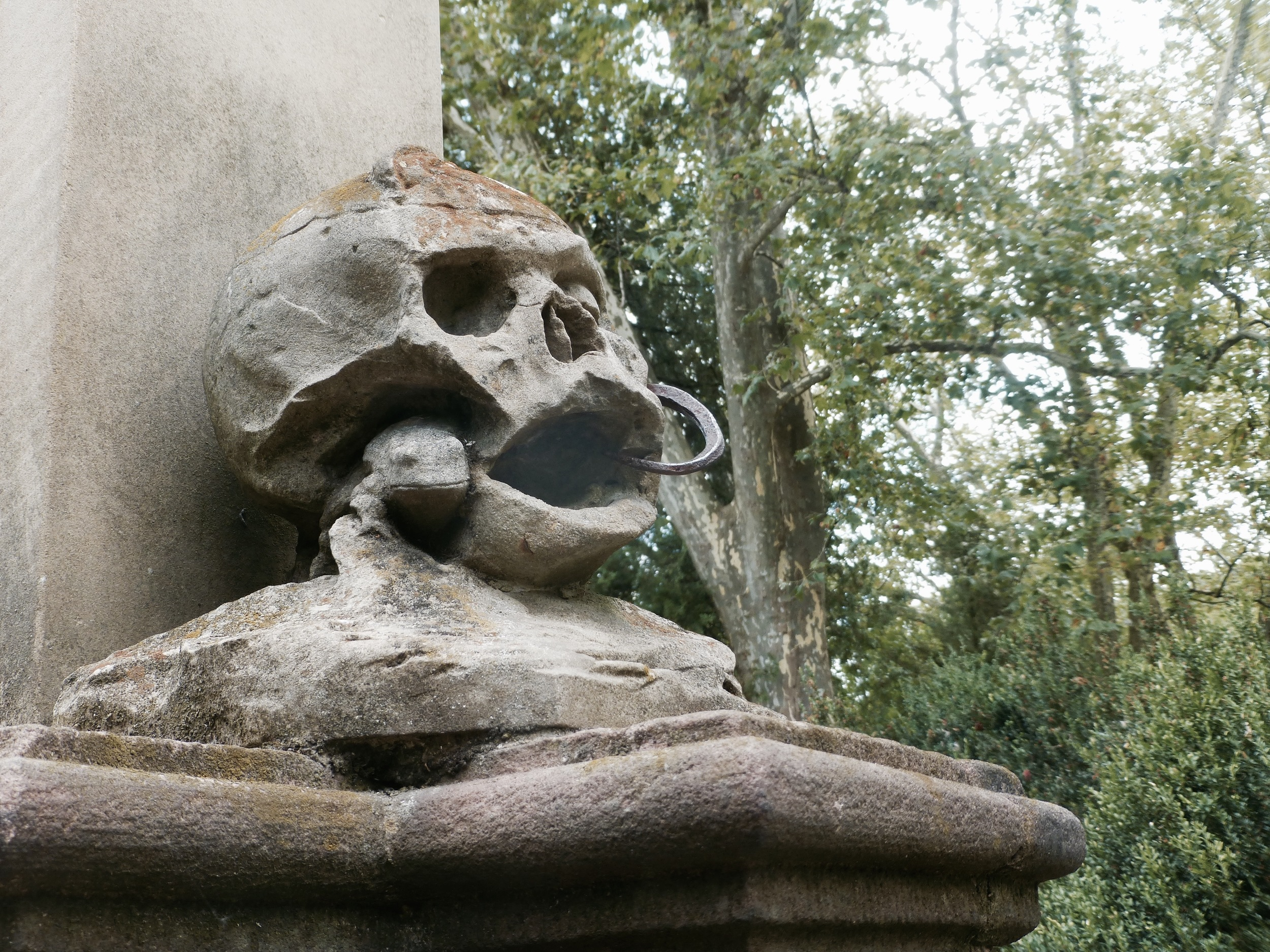 Blacksmith's Skull, Old Cemetery, Freiburg