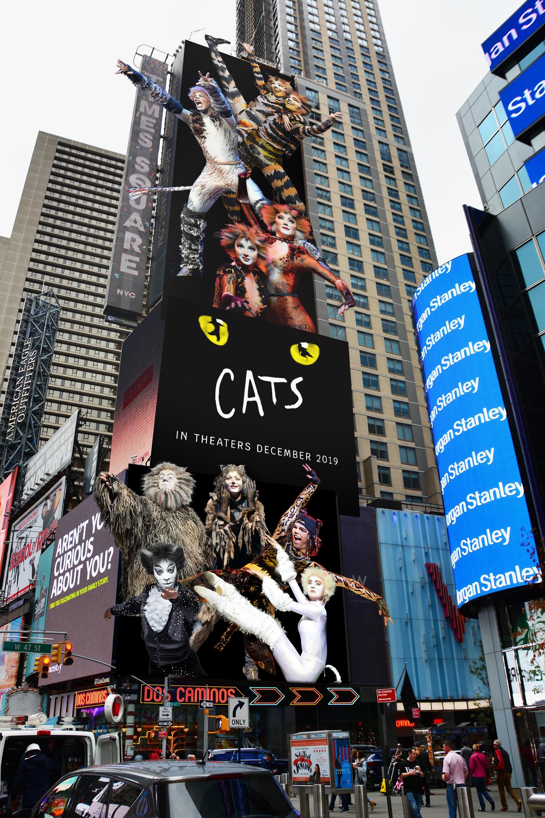 CCO_Cats_Universal_144-135-136_day.jpg