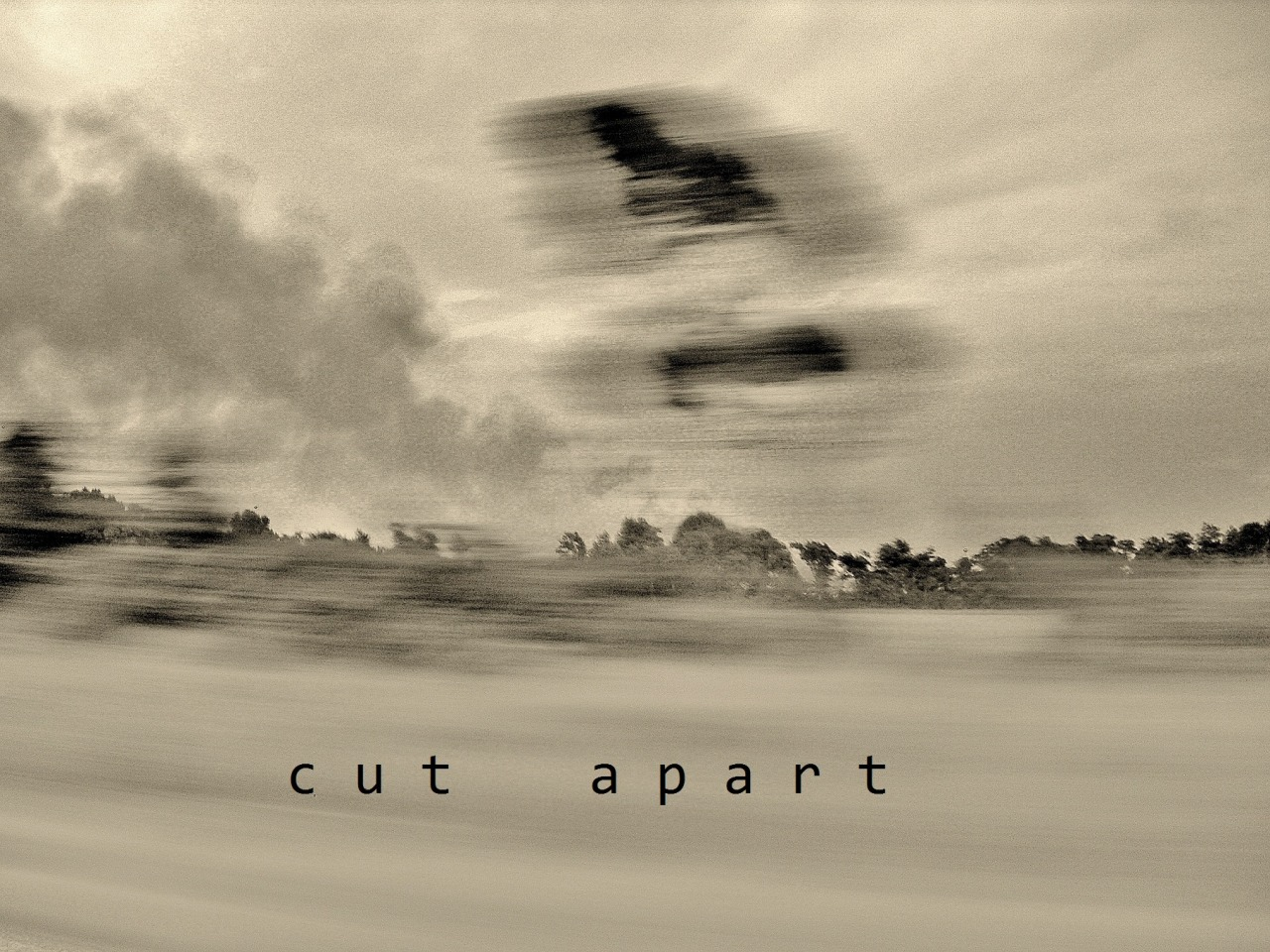 cut apart.jpg