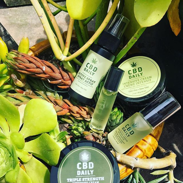 🌱Happy to announce our expanded offering of #CBD products by @CBDDaily. . 🌱2 strengths of cream . 🌱serum, great for massage . 🌱 roller ball for targeting specific pain, like wrists or temples . 🌱spray, for hard to reach spots like shoulder blades . 🌱priced at $15-39, these are a great to your wellness routine to alleviate pain or stress with topical application. No THC in these amazing products. . 🌱#hemp #cbdeveryday #painmanagement #yoga #yogini #thcfree #cbdoil #cbdhealth #cbdheals #cbdcream