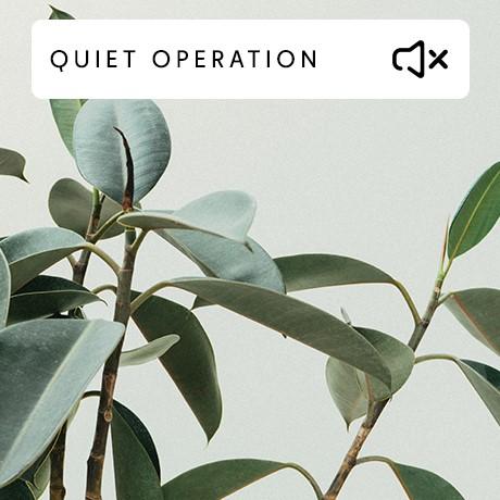 Quiet operation Convection.jpg