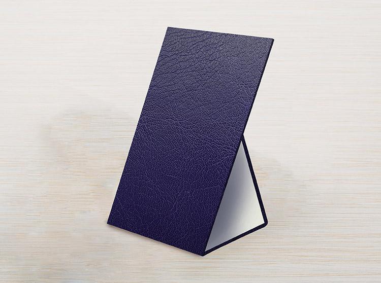 blue stand.jpg