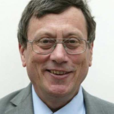 Prof Andrew Bush