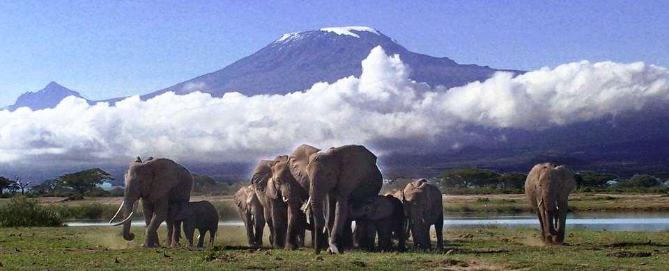 2-days amboseli_national_park.jpg