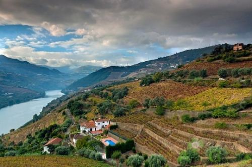 Douro region - Portugal
