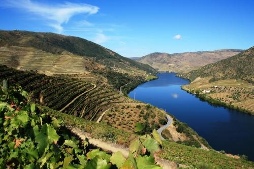 Visit Douro Region