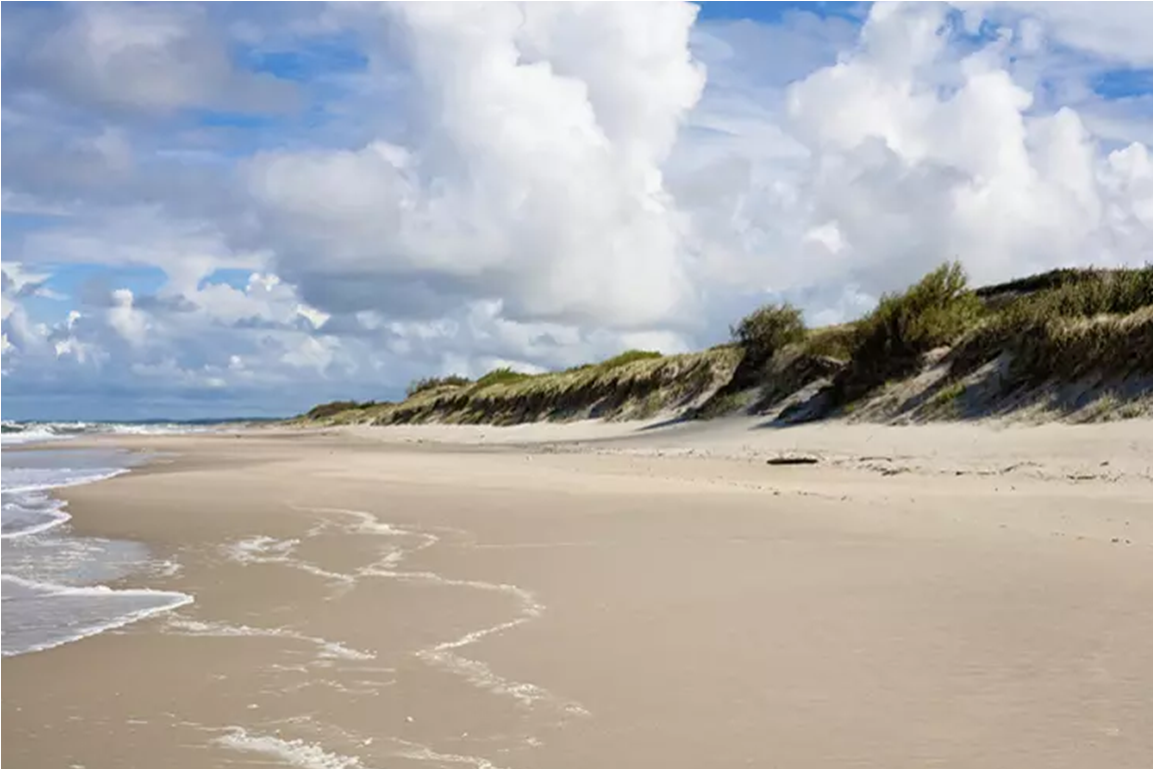 The Curonian Spit contains Europe's largest moving sand dunes. Image by Tatiana Rodionova / iStock / Getty Images