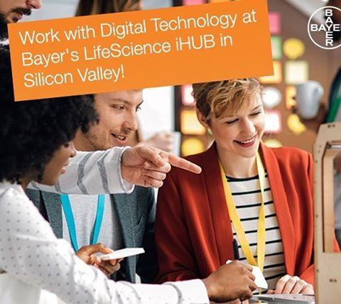 Blind Applying's #adventcalendar of Friday: Bayer's internship at their LifeScience iHUB in Mountain View, California - also known as Silicon Valley! Want to know more about Bayer? Visit http://www.blindapplying.com/bayer/  #siliconvalley #iHUB @bayerkarriere #usa #sanfrancisco #mountainview #california #tech #techinternship #science #internship #intern #internshipabroad