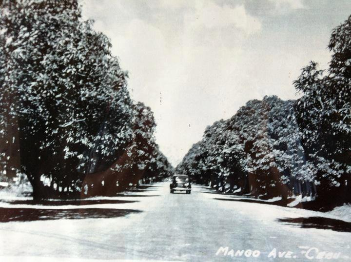 Mango Avenue, ca 1940s   About the title : General Maxilom Avenue, a.k.a Mango Avenue, got its nickname from the mango farm that used to exist there. Today, it's one of Cebu's busiest and most vibrant places with various institutions and establishments ranging from shops and bars to schools and churches.