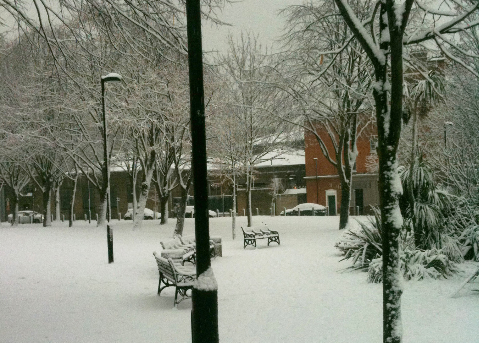 The Benches in front of the Tea House Theatre on a snowy day
