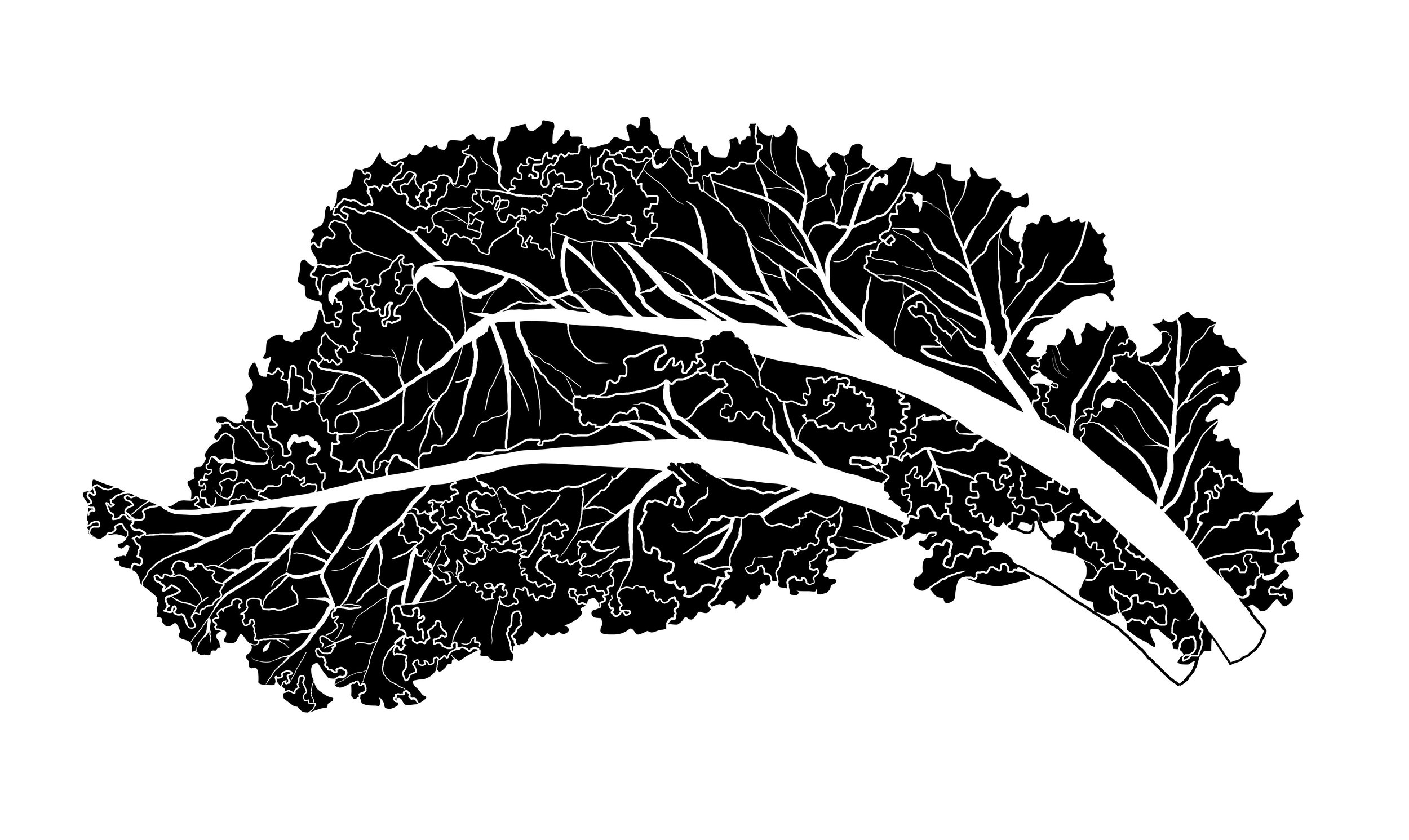 CITRIN-food-kale.jpg