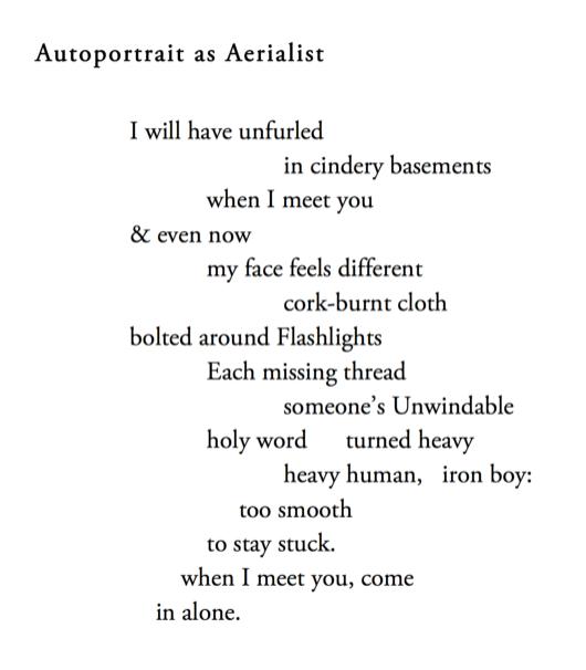 (autobiographia literaria)