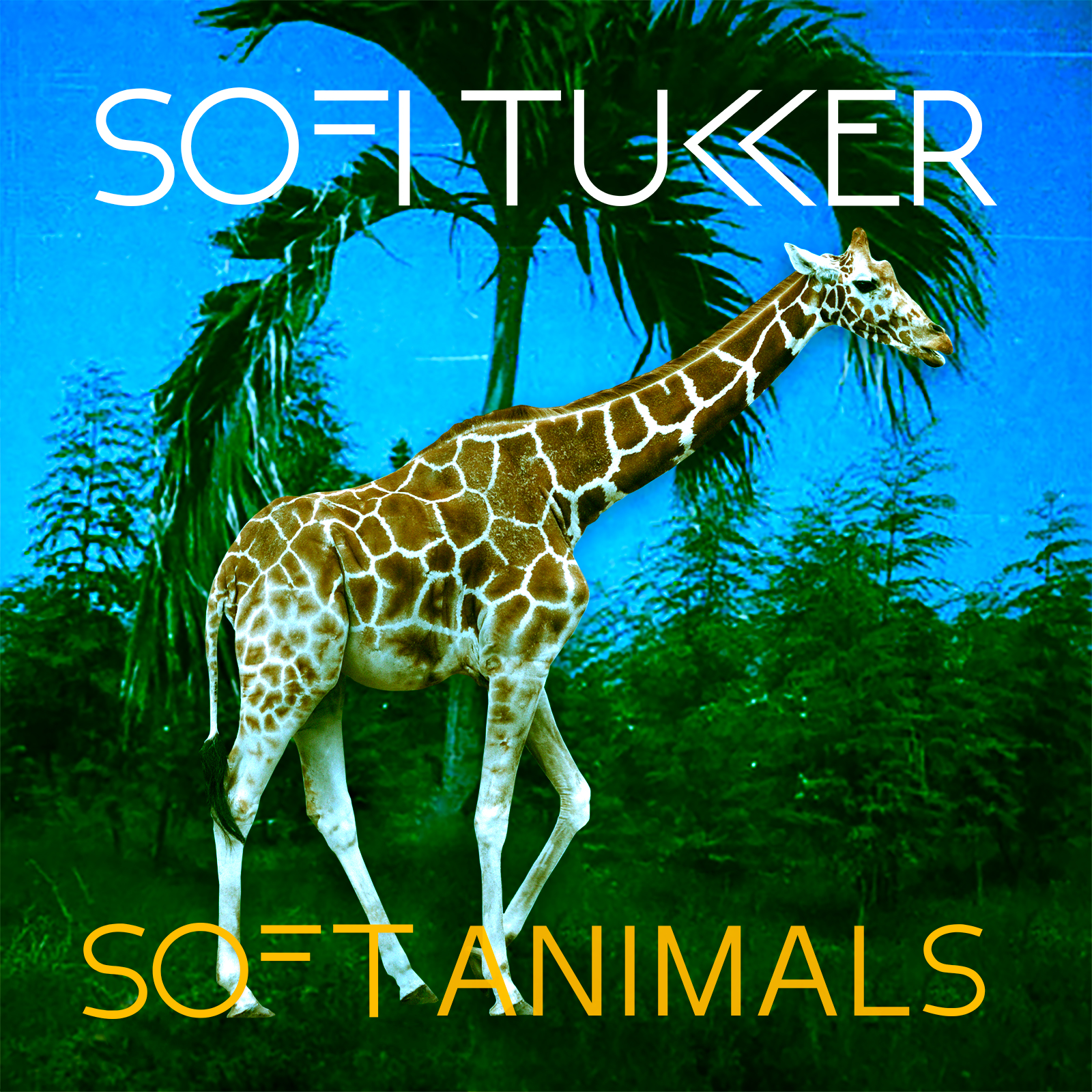 "SOFT ANIMALS - Our Debut EP w/ Grammy-Nominated Single ""Drinkee"""
