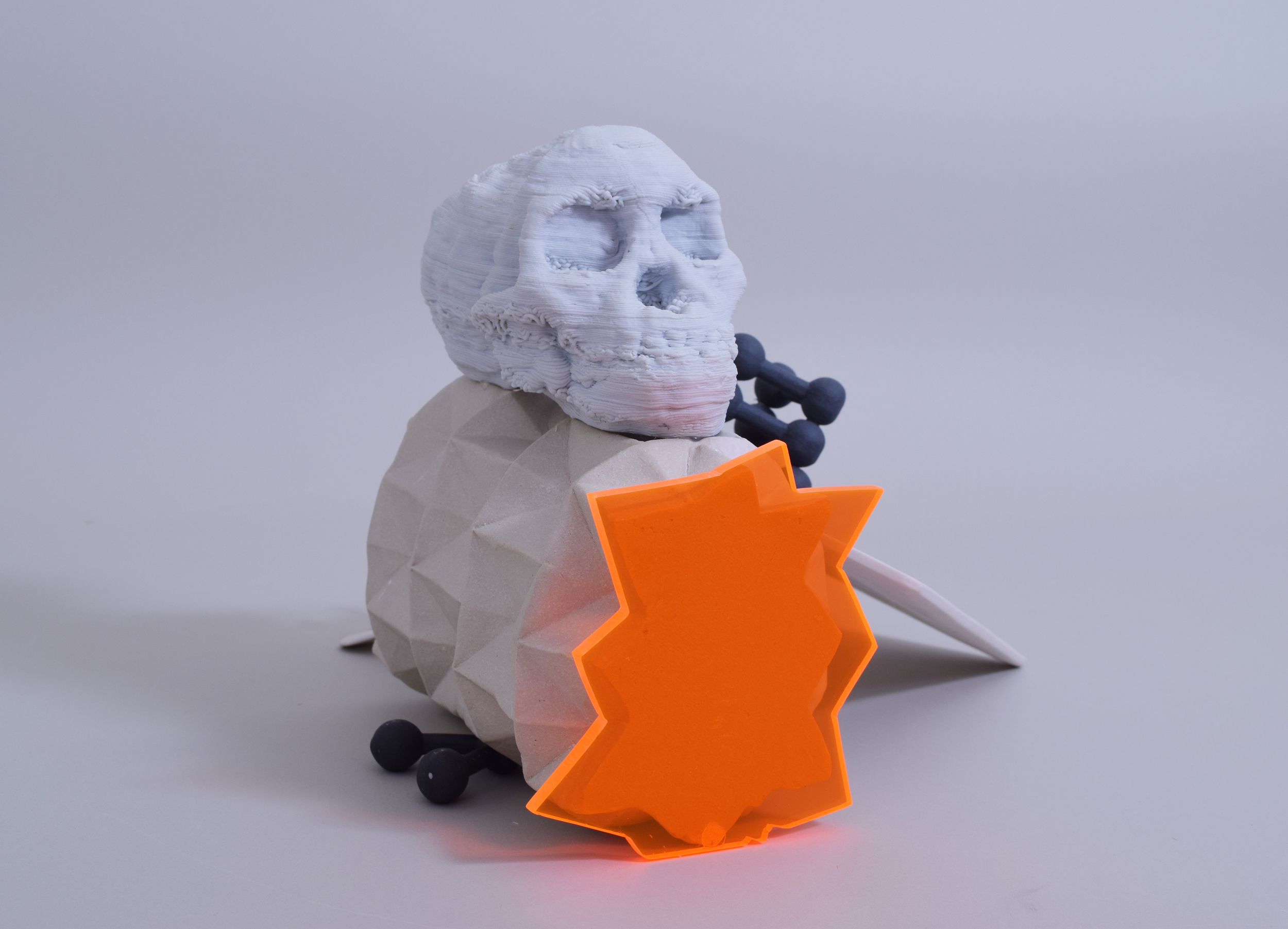 Composition with Skull and Doffodil (side view)
