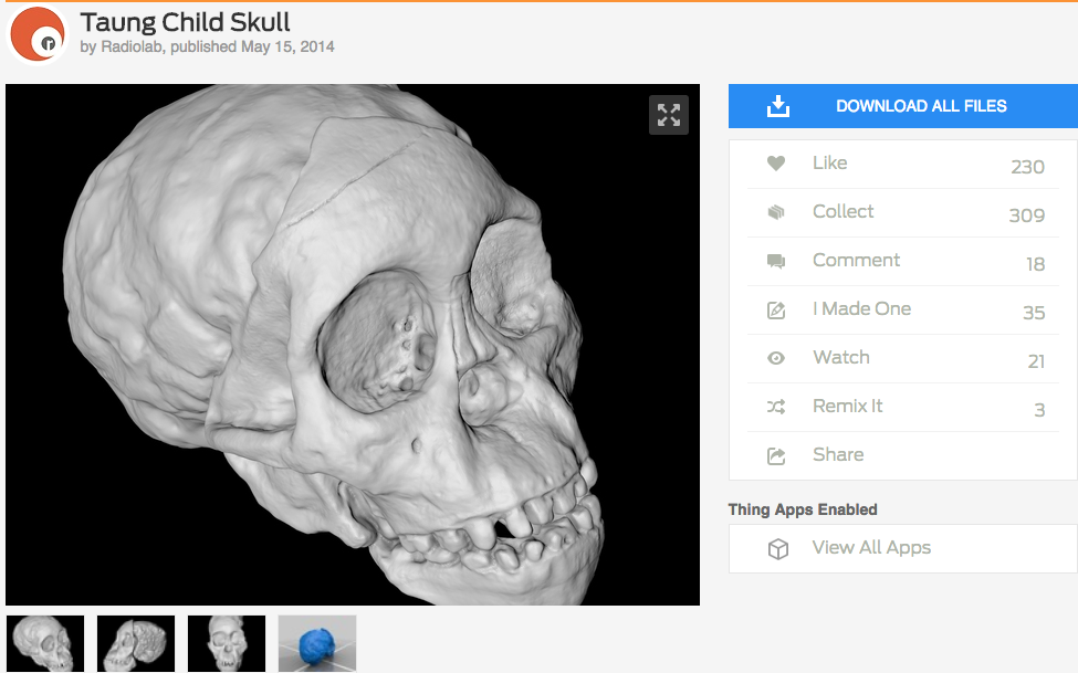 Listen to the amazing story about Taung's Child on Radio Lab