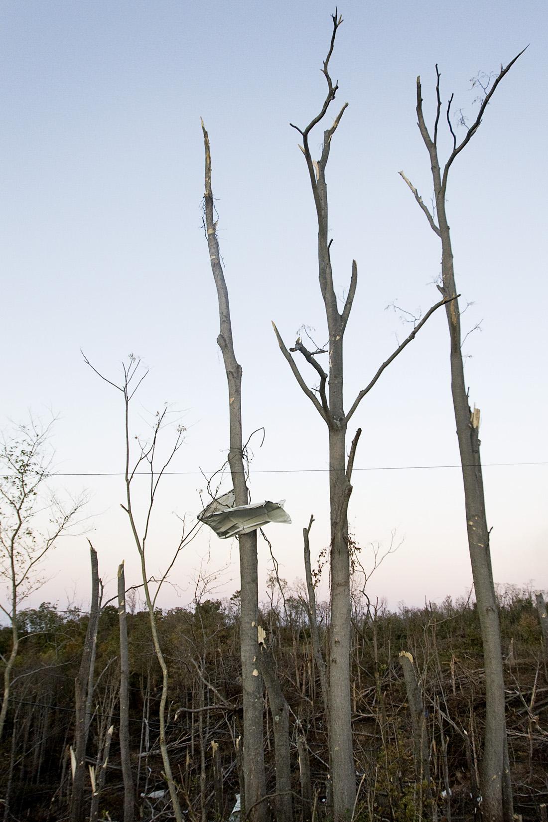 Debris rests among broken trees in Reedsville, Ohio.
