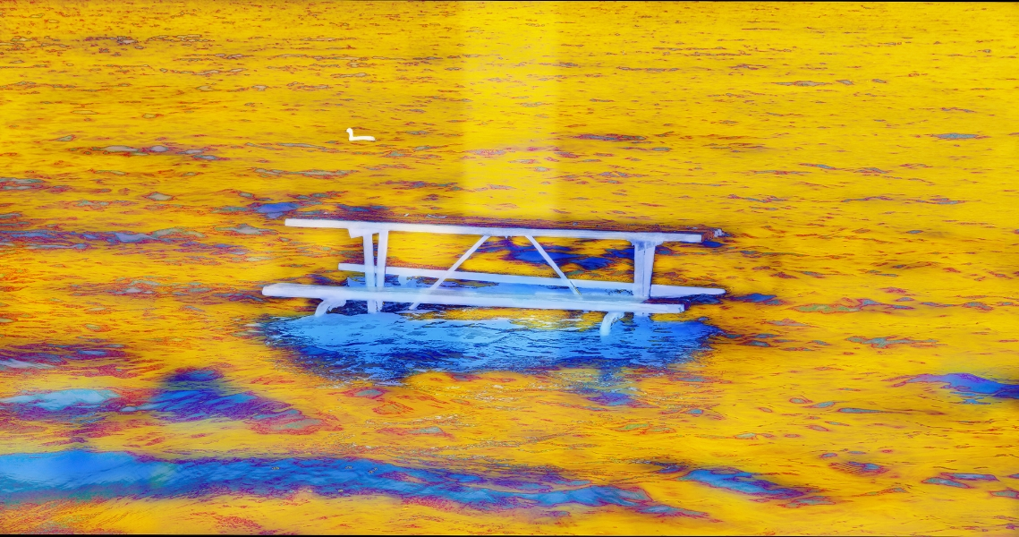 Pascaline Doucin-Dahlke  Picnic Table In The Water