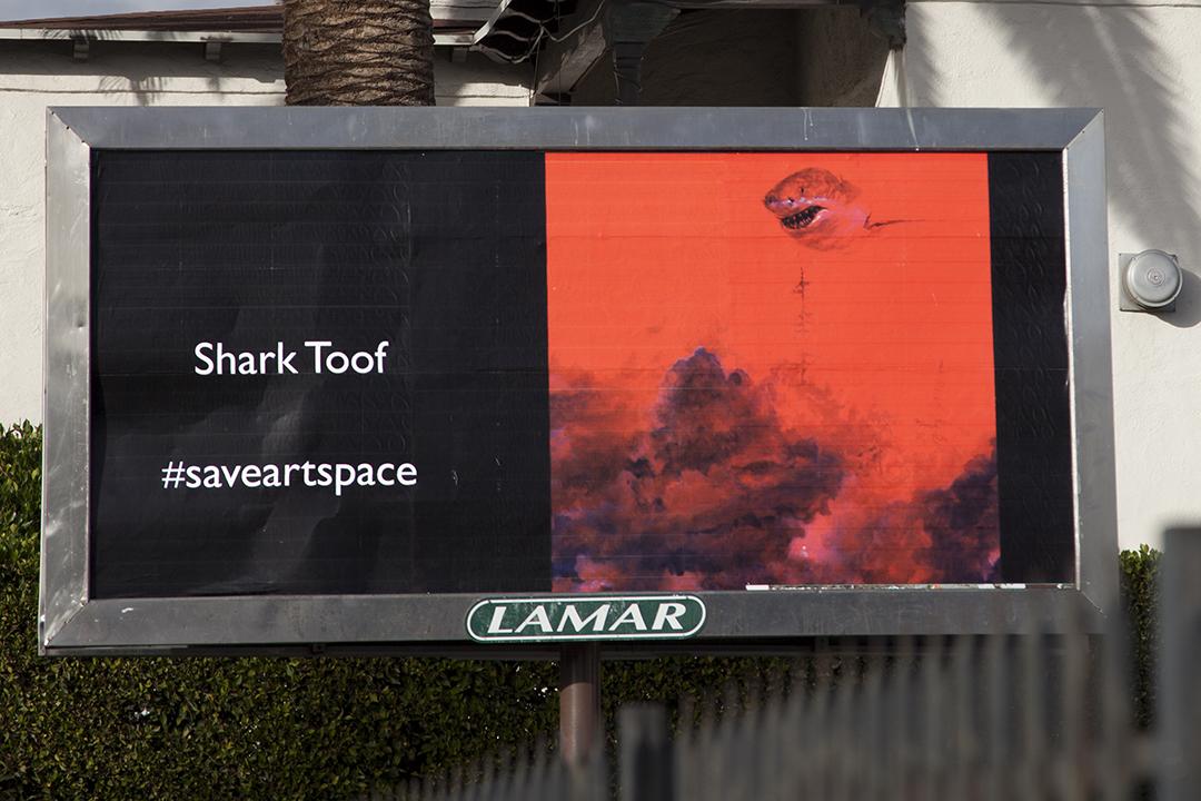 SharkToof1-small.jpg