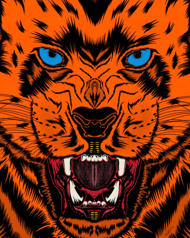 Paul Cvikevich    Cheetah