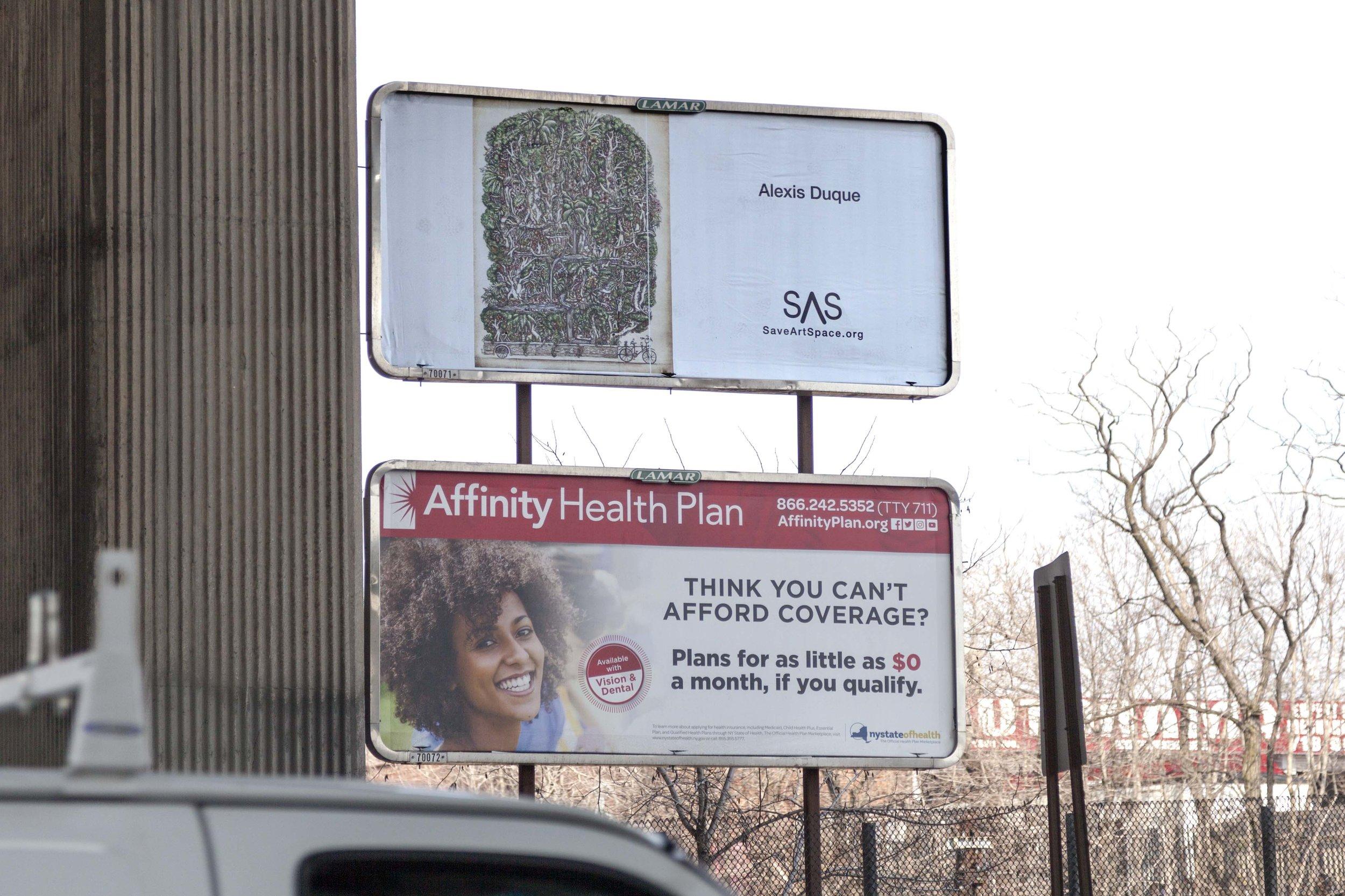 Alexis.500.3.jpg