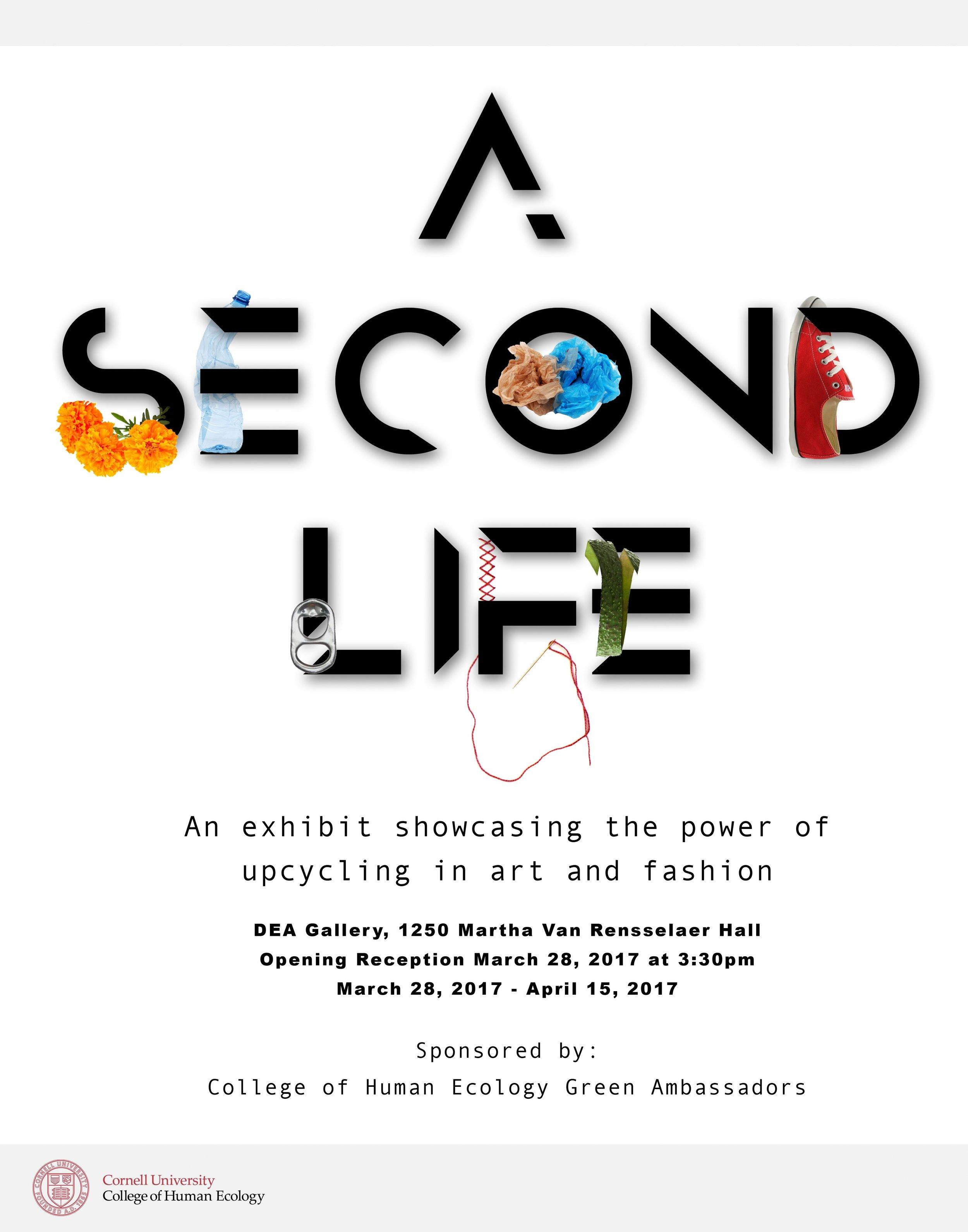 Second Life.jpg