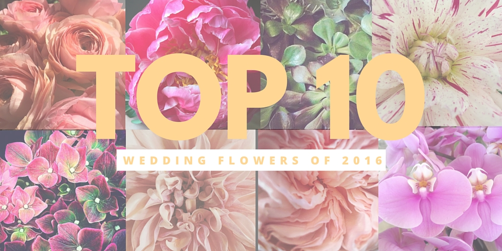 Edmonton Wedding Florists